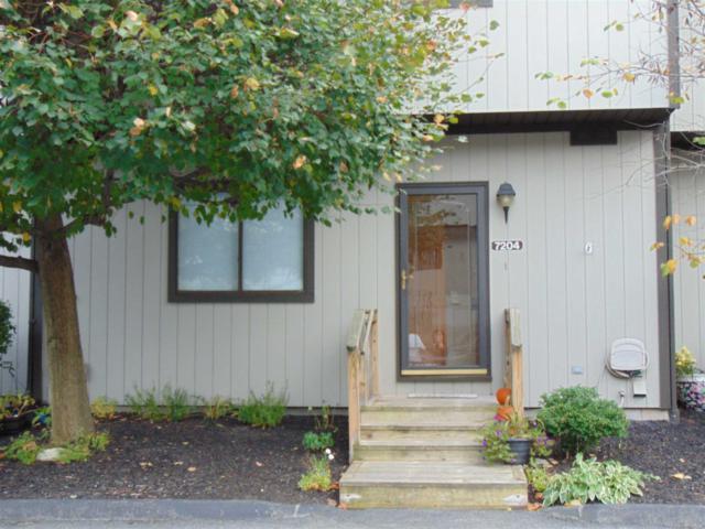 7204 Chelsea Cove, Beekman, NY 12533 (MLS #376065) :: Stevens Realty Group