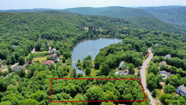 22 Appalachian West, East Fishkill, NY 12533 (MLS #399802) :: Barbara Carter Team