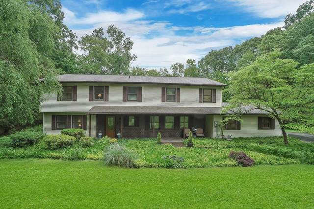 18 Pellbridge Dr, East Fishkill, NY 12533 (MLS #400926) :: Barbara Carter Team
