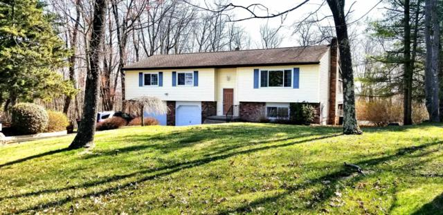 40 Briar Patch Ln, Pleasant Valley, NY 12569 (MLS #369506) :: Stevens Realty Group