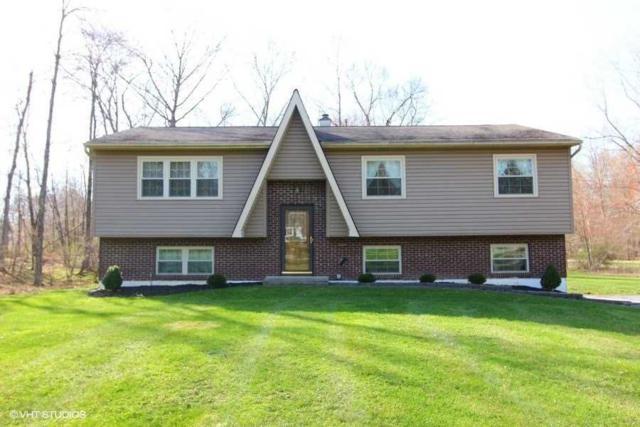44 Queen Anne Lane, East Fishkill, NY 12590 (MLS #370959) :: Stevens Realty Group