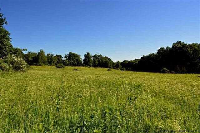 Old Runway Road - Lo, Marbletown, NY 12484 (MLS #365560) :: Stevens Realty Group