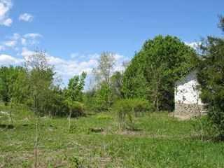 541565 Plass Rd, Pleasant Valley, NY 12569 (MLS #375568) :: Stevens Realty Group