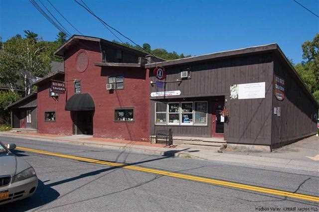 388 Main St, Rosendale, NY 12472 (MLS #378341) :: Stevens Realty Group