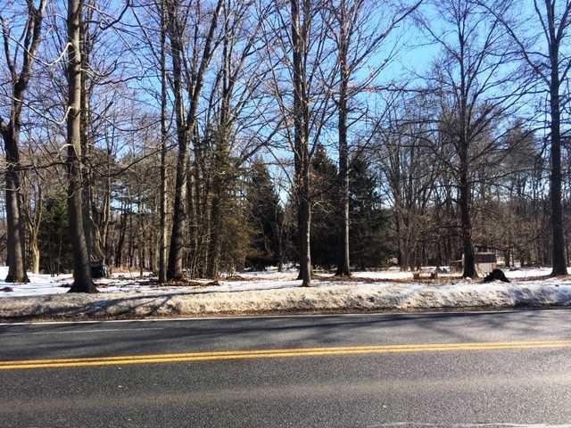 88 N Putt Corners Road, New Paltz, NY 12561 (MLS #378342) :: Stevens Realty Group