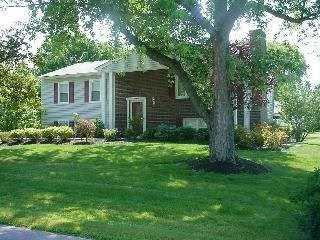 18 Sabra Ln, Wappinger, NY 12590 (MLS #378427) :: Stevens Realty Group