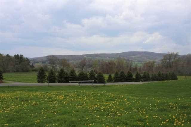Yonderview Road, Copake, NY 12529 (MLS #399034) :: Barbara Carter Team