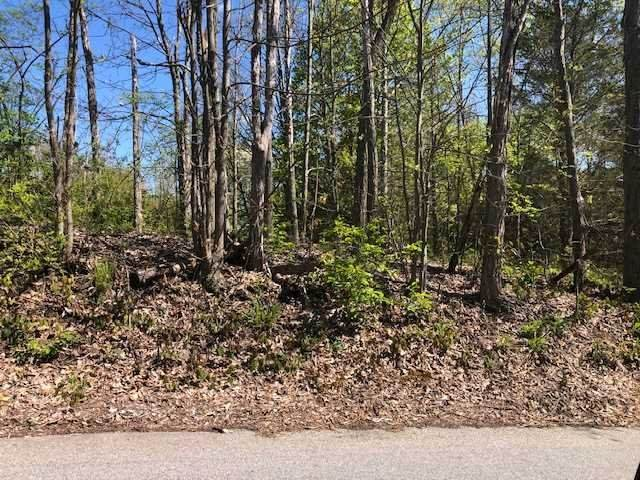 Ketchamtown Rd, Wappinger, NY 12590 (MLS #402567) :: The Clement, Brooks & Safier Team