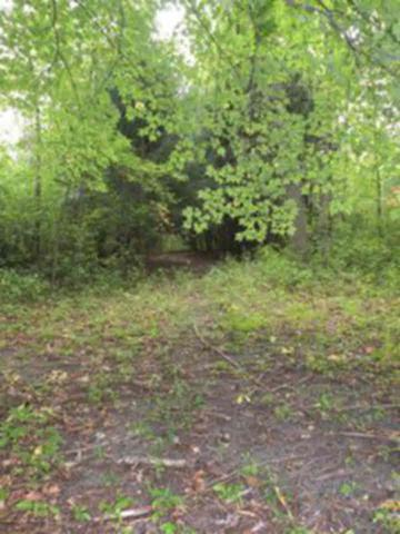 VL S Meridian 9.5 Acres, Midland, MI 48640 (MLS #30906745) :: Bricks Real Estate Experts