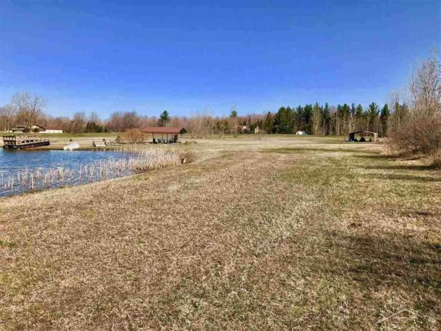 E Freeland Road, Freeland, MI 48623 (MLS #31345961) :: Bricks Real Estate Experts