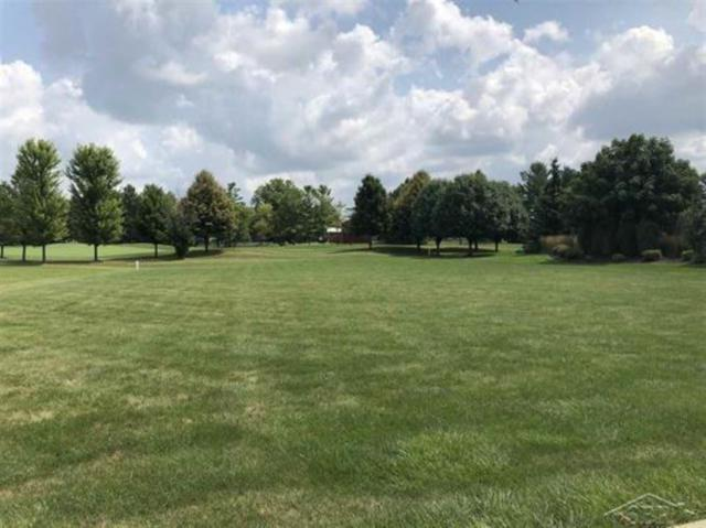 54 E Grove Court, Freeland, MI 48623 (MLS #31356877) :: Bricks Real Estate Experts
