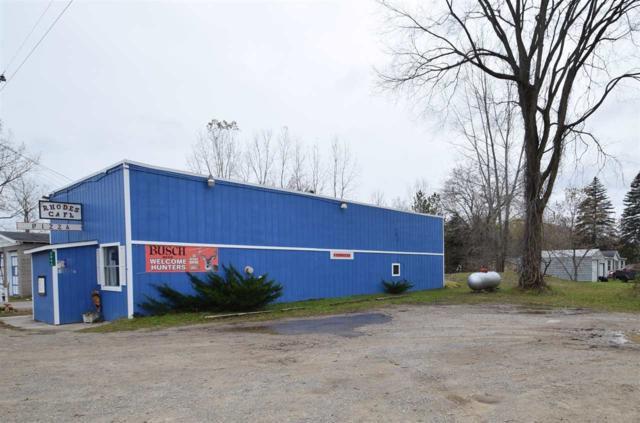 2866 Rhodes, Rhodes, MI 48652 (MLS #31364744) :: Bricks Real Estate Experts