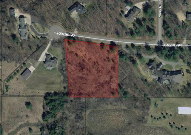 3608 E Felicia Drive, Midland, MI 48642 (MLS #31370316) :: Bricks Real Estate Experts