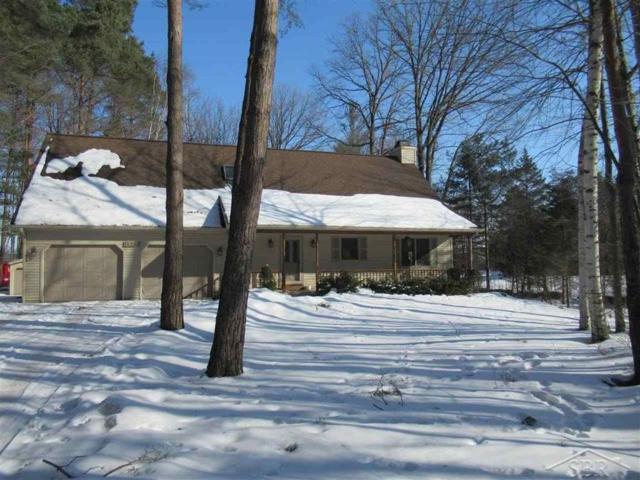 11280 Sarle Road, Freeland, MI 48623 (MLS #31372644) :: Bricks Real Estate Experts