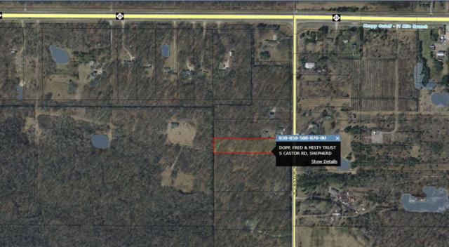 S Castor, Shepherd, MI 48883 (MLS #31382087) :: Bricks Real Estate Experts