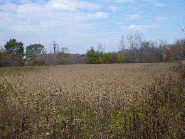 E River Rd Vl, Freeland, MI 48623 (MLS #31384597) :: Bricks Real Estate Experts