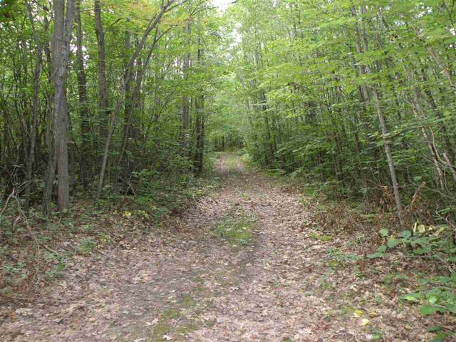 N County Line Rd, Farwell, MI 48622 (MLS #31393409) :: Bricks Real Estate Experts