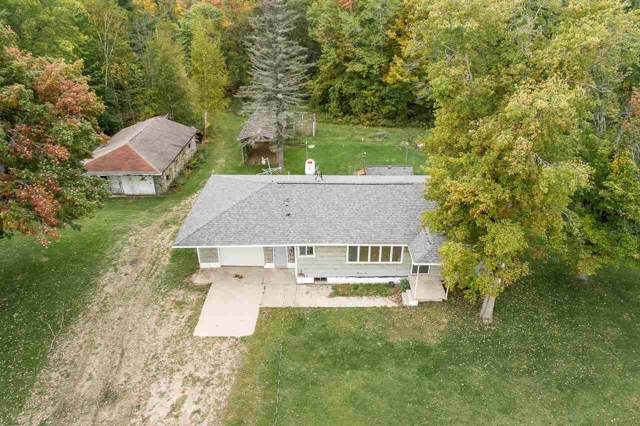 4360 School Road, Rhodes, MI 48652 (MLS #31397649) :: Bricks Real Estate Experts