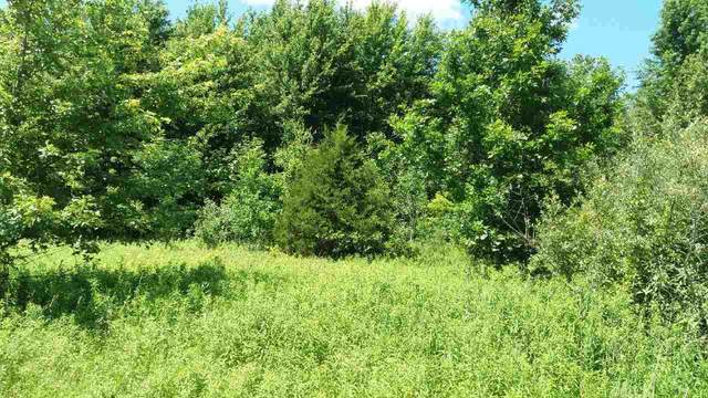 17000 Lunney Road, Hemlock, MI 48626 (MLS #50006601) :: Bricks Real Estate Experts