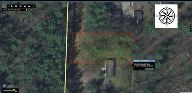 N West River Rd, Sanford, MI 48657 (MLS #31361634) :: Bricks Real Estate Experts