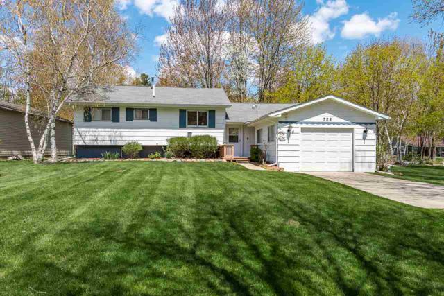 728 Kathy Ct, Beaverton, MI 48116 (MLS #31375685) :: Bricks Real Estate Experts