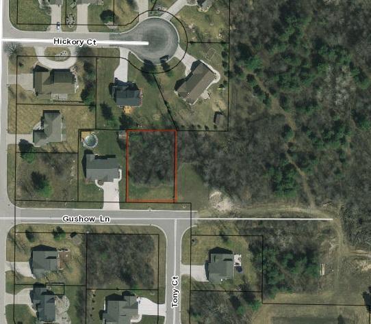 0 Gushow Lane, Auburn, MI 48611 (MLS #31346045) :: Bricks Real Estate Experts