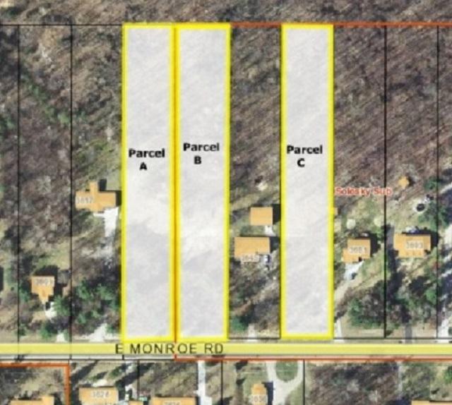 Parcel C Monroe Rd., Midland, MI 48642 (MLS #31347763) :: Bricks Real Estate Experts