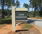 1041 Little Greenbriar - Photo 2