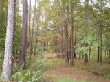 2041 Pine Valley Ct. - Photo 11