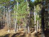 1101 Shadow Creek Way - Photo 6