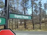 2161 Osprey Poynte - Photo 4