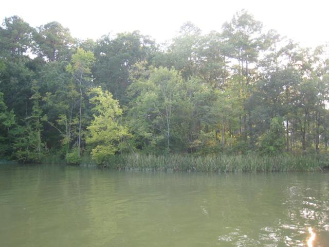 Lot 3 Lake Crest Dr, Sparta, GA 31087 (MLS #37517) :: Lane Realty
