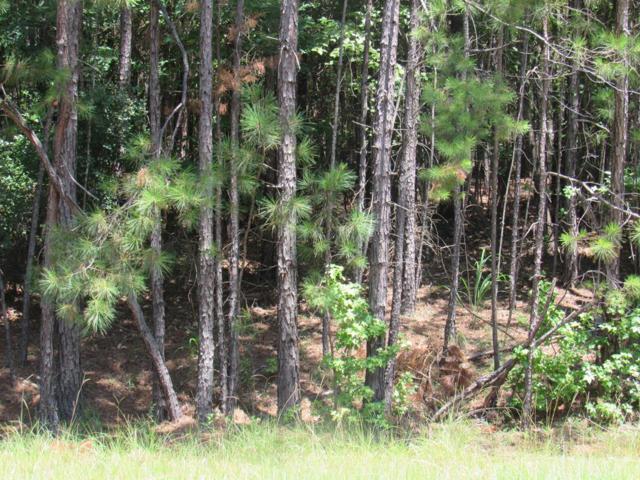 105 Brenda Lane, Sparta, GA 31087 (MLS #38251) :: Lane Realty