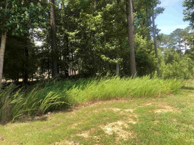 2281 Osprey Point, Greensboro, GA 30642 (MLS #38254) :: Lane Realty