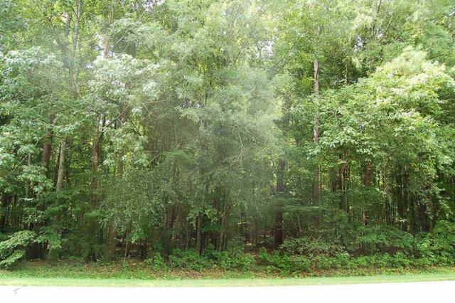 Lot 2 Heidi Trail, Buckhead, GA 30625 (MLS #38367) :: Lane Realty