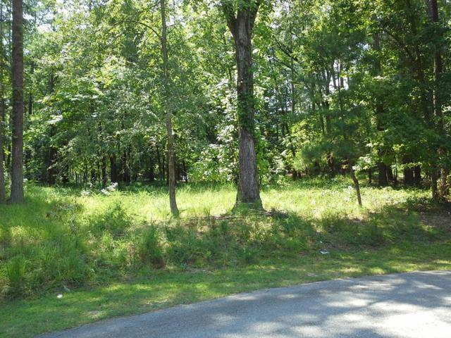 1030 Oak Valley Rd., Greensboro, GA 30642 (MLS #38378) :: Lane Realty