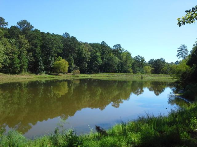 1750 Osprey Poynte, Greensboro, GA 30642 (MLS #38672) :: Lane Realty
