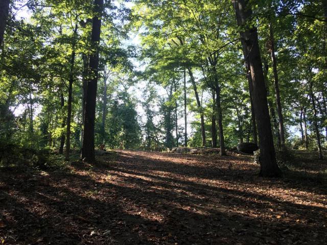 213 Tanglewood Drive, Gray, GA 31032 (MLS #38713) :: Lane Realty