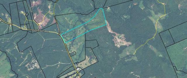 90 Acres Hunts Chapel, Sparta, GA 31087 (MLS #39329) :: Lane Realty