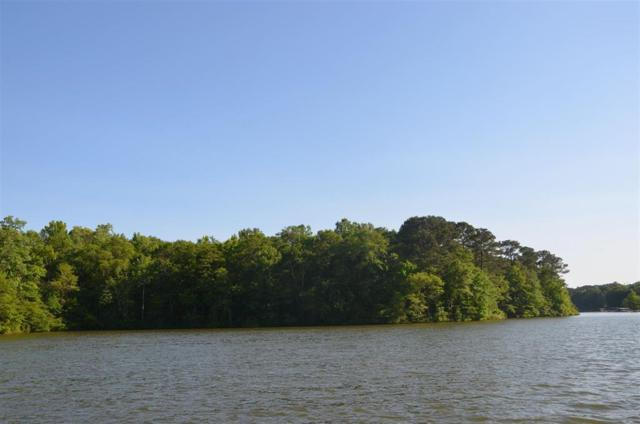 55 Acres Ne Collis Road, Eatonton, GA 31024 (MLS #39507) :: Lane Realty