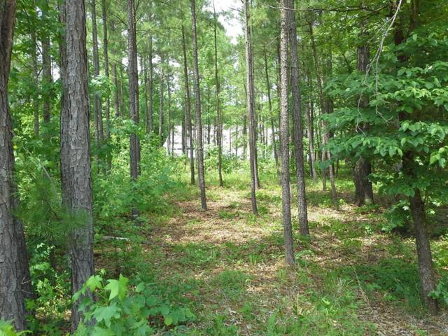 1031 Willow Trace, Greensboro, GA 30642 (MLS #40070) :: Lane Realty