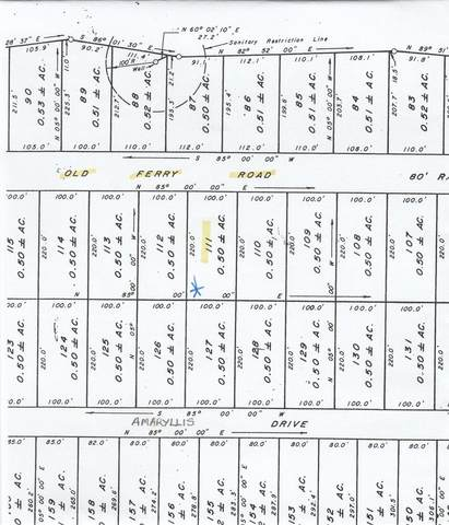 Lot 111 Old Ferry Road, Sparta, GA 31087 (MLS #41714) :: Lane Realty