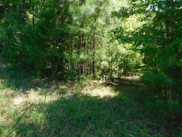 lot 295 Julep Drive, Eatonton, GA 31024 (MLS #42333) :: Lane Realty