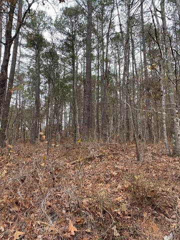Lot 571 Overland Tr., Sparta, GA 31087 (MLS #44021) :: Lane Realty