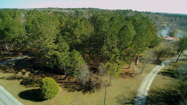 Lot 3 Quesenberry Drive, Eatonton, GA 31024 (MLS #44037) :: Lane Realty