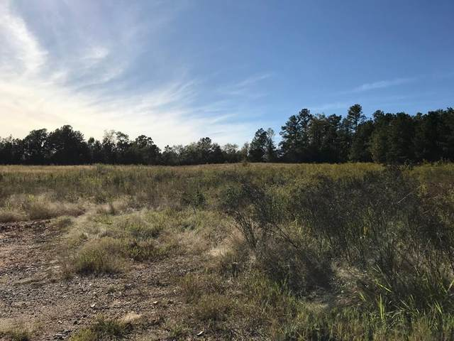LT C3-X Sand Creek Trail, Gray, GA 31032 (MLS #44186) :: Lane Realty