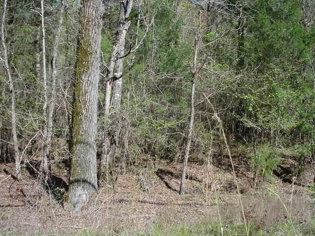 Lot 365 Lake Sinclair Drive, Sparta, GA 31087 (MLS #44564) :: Lane Realty