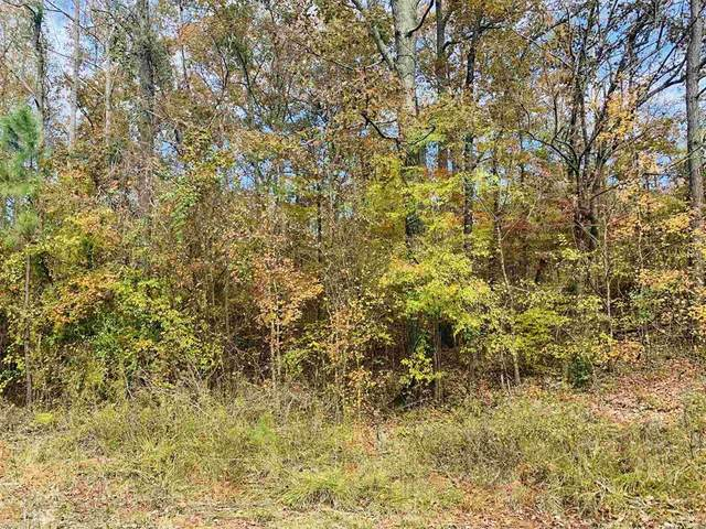 246 Little River Trl, Eatonton, GA 31024 (MLS #44748) :: Lane Realty