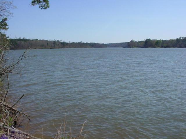 Lot 14 Shagbark Pointe Drive, Sparta, GA 31087 (MLS #37538) :: Lane Realty