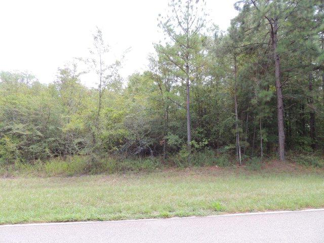199/201 Merry Drive Nw, Milledgeville, GA 31061 (MLS #32315) :: Lane Realty